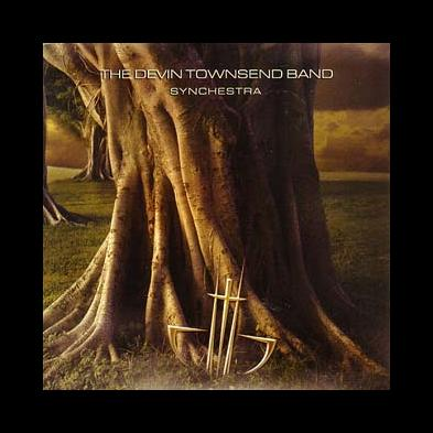 Devin Townsend - Synchestra
