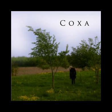 Coxa  - Coxa