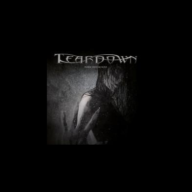 Teardown - Inner Distortions