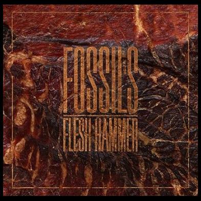 Fossils - Flesh Hammer