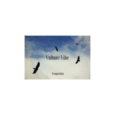 Vulture Vibe - Temptation