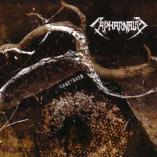 Capharnaum - Fractured