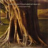 Devin Townsend - Synchestra