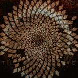 Scale the Summit  - The Collective