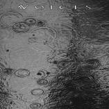 Voices - From The Human Forest Create A Fuge Of Imaginary Rain