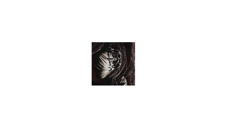 Detonation: nye medlemmer, nyt album